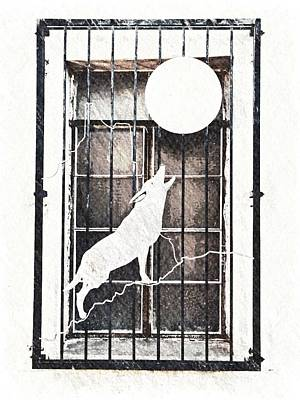 Photograph - Window With Native American Symbol by Tatiana Travelways