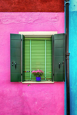 Photograph - Window With Plant Burano_dsc5661_03072017 by Greg Kluempers