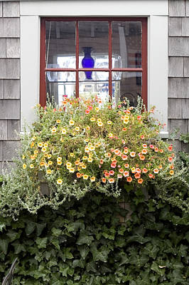 Krauzyk Photograph - Windowbox - Nantucket by Henry Krauzyk