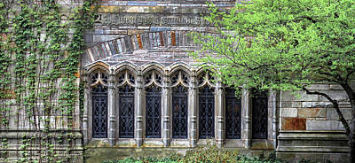 Photograph - Windows At Yale University by Dave Mills
