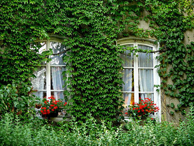 Photograph - Windows Draped In Ivy by John Bushnell