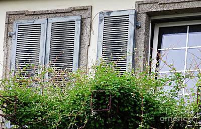 Photograph - Windows In Rudesheim 2 by Sarah Loft