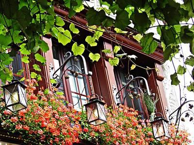 Photograph - Windows In Rudesheim 3 by Sarah Loft