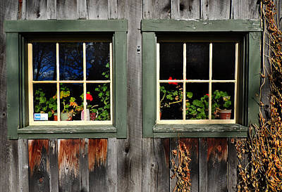 Photograph - Windows Of Vermont by Nancy Griswold