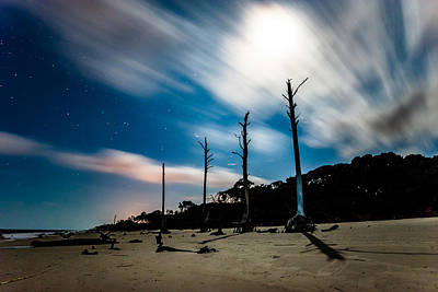 Photograph - Winds Of Driftwood Beach by Chris Bordeleau