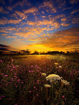 Floral Landscape Photograph - Windsong by Phil Koch