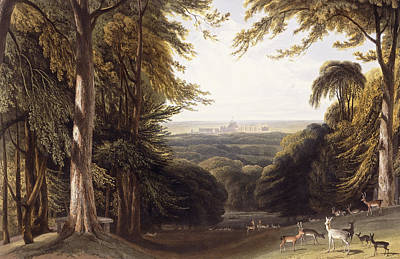 Wildlife Landscape Painting - Windsor Castle From The Deer Park by William Daniell