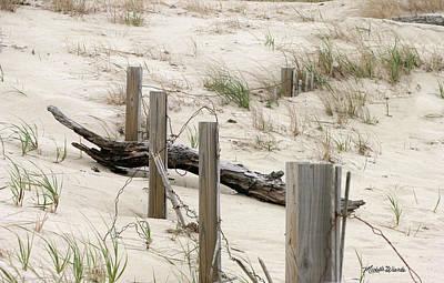 Windswept Beach Fence Cape Cod Massachusetts Art Print