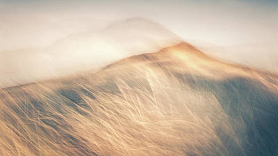 Intentional Camera Movement Photograph - Windswept by Chris Dale