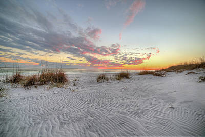 Windswept Dunes In South Walton Art Print by JC Findley