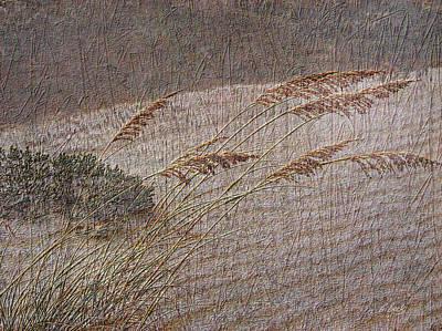 Windswept Art Print by Gordon Beck