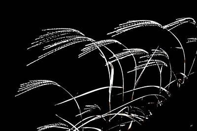 Windswept Grasses Art Print by Gerlinde Keating - Galleria GK Keating Associates Inc