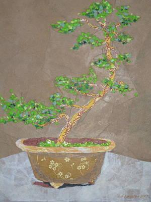 Windswept Juniper Art Print by Leah  Tomaino
