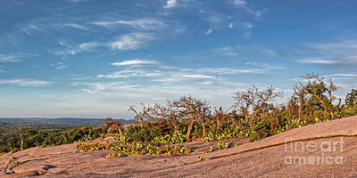 Photograph - Windswept Landscape Of Oaks And Prickly Pear Cacti Atop Enchanted Rock - Fredericksburg Texas  by Silvio Ligutti