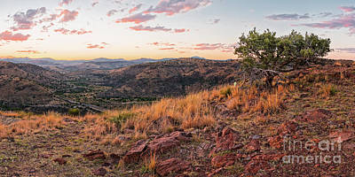 Photograph - Windswept Lone Oak Overlooking Limpia Creek Valley - Davis Mountains State Park - West Texas by Silvio Ligutti