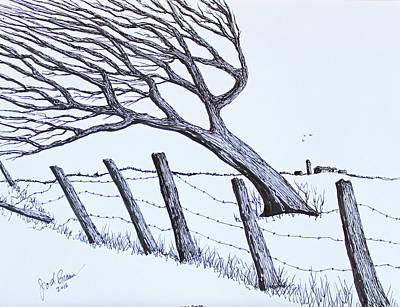 Drawing - Windy 24/7 by Jack G Brauer