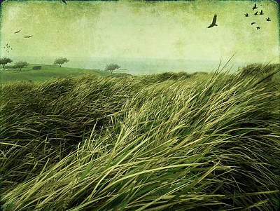 Art Print featuring the digital art Windy Day On The Nut by Margaret Hormann Bfa