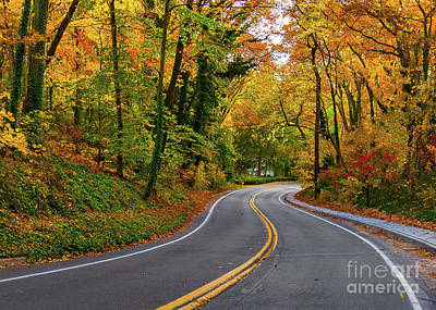 Photograph - Windy Fall Road In New York by Alissa Beth Photography