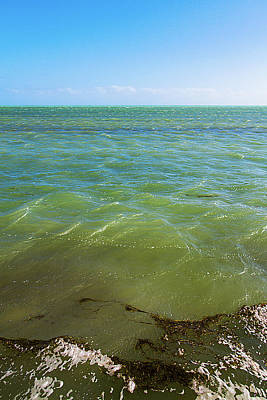 Photograph - Windy Key West Seascape by Bob Slitzan