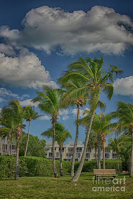 Photograph - Windy Sanibel Day by Deborah Benoit