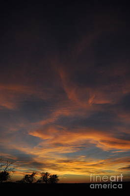 Photograph - Windy Skies by Anjanette Douglas