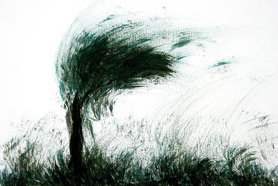 Drawing - Windy Tree by ZileArt