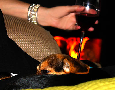 Photograph - Wine And A Fire And A Dog by Susan Vineyard