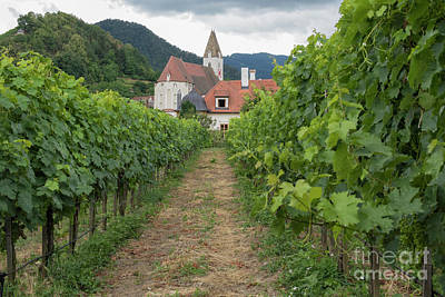 Photograph - Wine And Church by Juli Scalzi