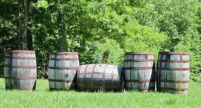 Photograph - Wine Barrels by Caroline Stella