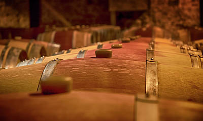 Photograph - Wine Barrels by Mick Burkey