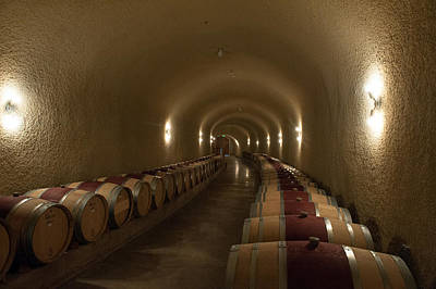 Photograph - Wine Cave-3 by Gary Rose