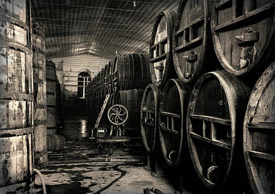 Vintage Wine Lovers Photograph - Wine Cellar 1939 by Daniel Hagerman