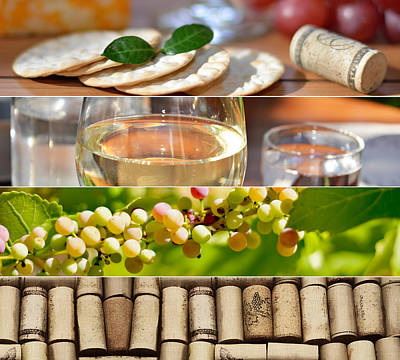 Photograph - Wine Collage Photo by Serena King
