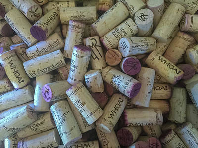 Photograph - Wine Corks by Jonathan Nguyen