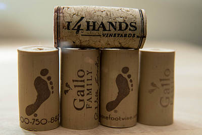 Photograph - Wine Corks by Teresa Blanton