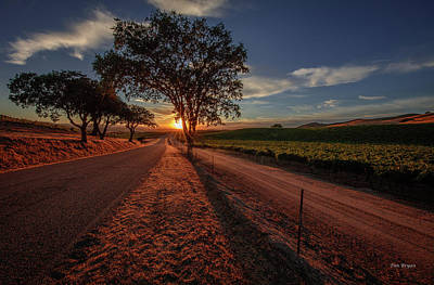 Photograph - Wine Country Evening by Tim Bryan