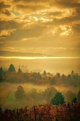 Fall Colors Photograph - Wine Country Morning by Don Schwartz