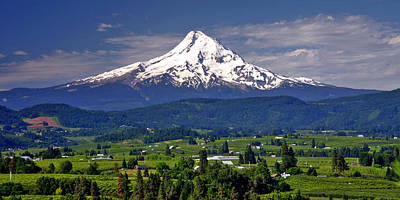 Mount Hood Photograph - Wine Country by Scott Mahon