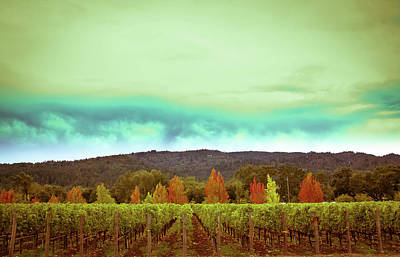 Photograph - Wine In Time by Ryan Weddle