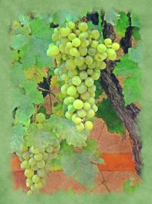 Wine On The Vine Art Print by Lori Seaman