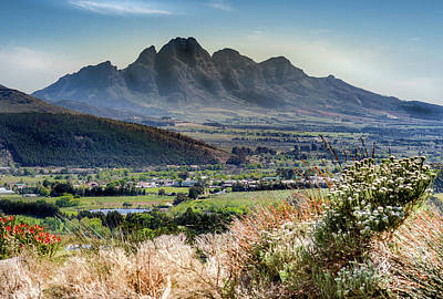 Photograph - Wine Region, Capetown, South Africa by Mark Coran