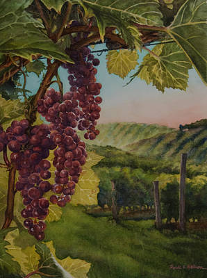 Wine Vineyard Print by Heidi E  Nelson