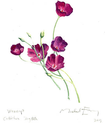 Painting - Winecup - Callirhoe Digitata by Michael Earney