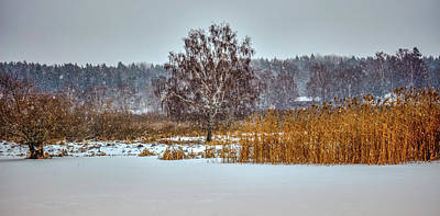 Photograph - Winter #h2 by Leif Sohlman