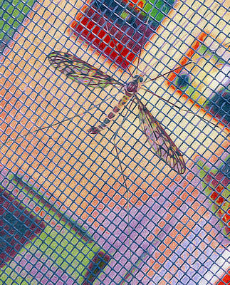 Winged Insect. Art Print