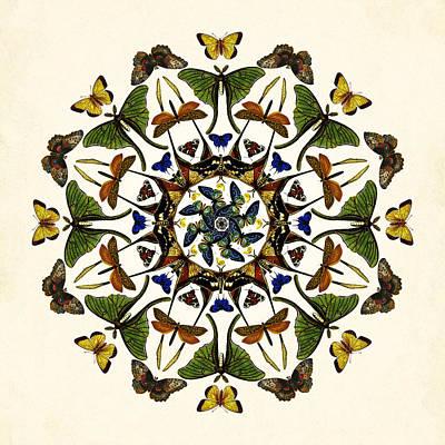Digital Art - Winged Kaleidoscope by Deborah Smith