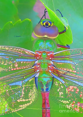 Photograph - Wings Of Liberty - Dragonfly  Macro by Claudia Ellis