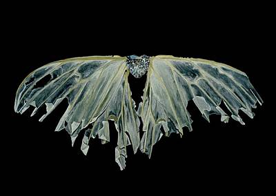 Wings Of Love Original by Jessica Lee Nelson