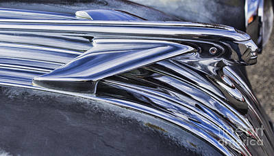 Photograph - Wings Of The Pontiac by Steven Parker