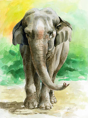 Elephants Painting - Winky by Galen Hazelhofer
